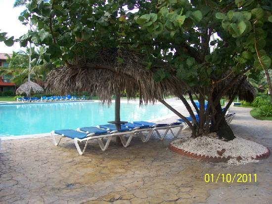 Caribe Club Princess Beach Resort & Spa: pool (different angle)