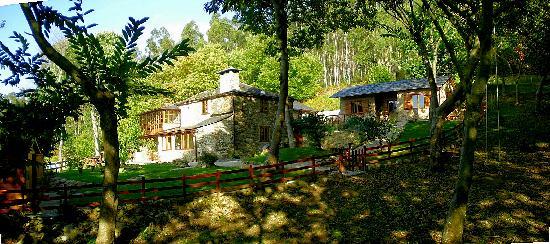 Ultreia Rural B&B: Rodeada de bosque de castaños