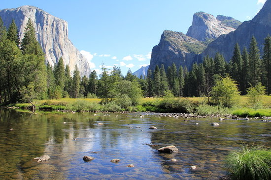 Good Yosemite Valley Floor Tour: Taken At The Stop Along The Merced River.