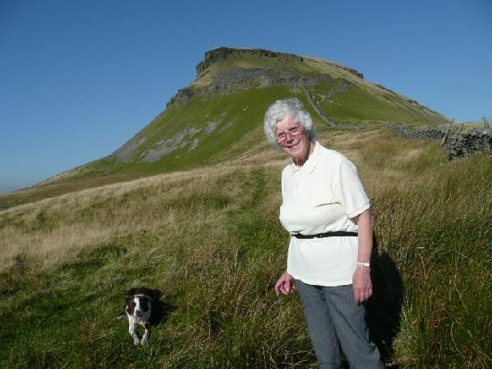 The Willows Bed & Breakfast: One of our guest on Pen-y-Ghent - Whats next on the list?