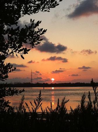 Fort De Soto Park: Sunset from campsite