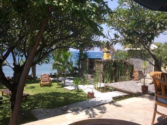 Puri Wirata Dive Resort and Spa Amed: Estanque