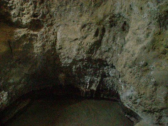 Hotel Villa Sirena: sorgente naturale