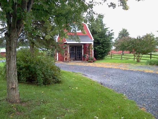Piney Hill Bed & Breakfast: Piney Hill Gift shop