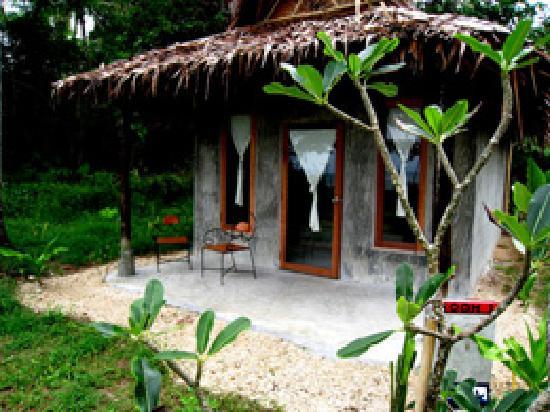 Fisherman's Cottage: Shark