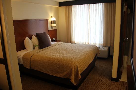 Hyatt Place Memphis Primacy Parkway: Chambre