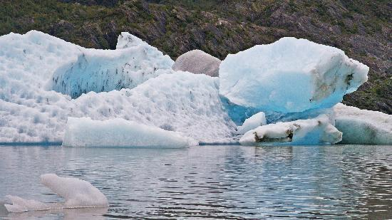 Mendenhall Glacier Visitor Center: Floating Ice