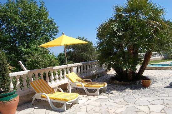 La Villa Florida : Terrasse des PALMIES
