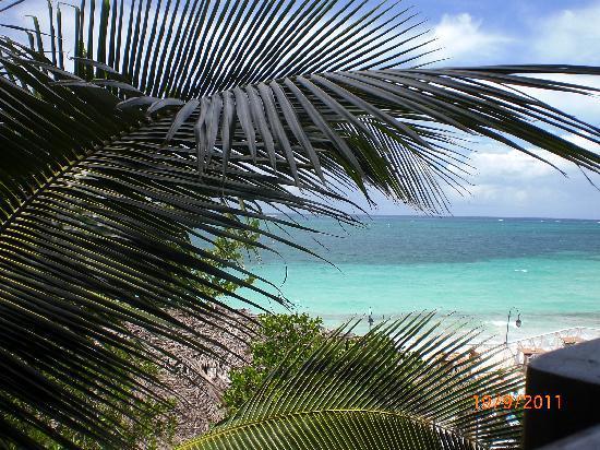 Paradisus Rio de Oro Resort & Spa: view from the beach bar