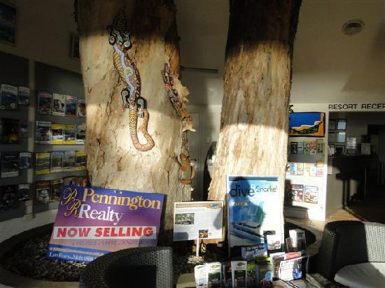 Paradise On The Beach Resort Palm Cove: ..die Bäume wachsen in der  Reception