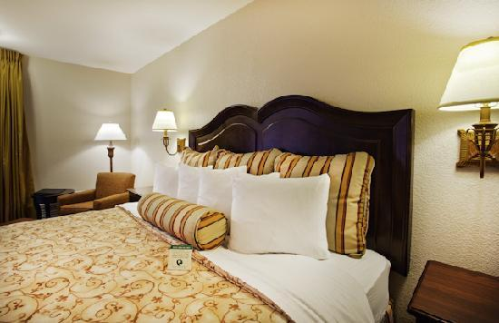 Best Western Plus Inn At The Vines: King Bedded Room