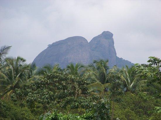 Moodabidri, India: Soans Farm