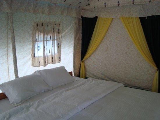 Camp Nirvana Yamunotri: Camp Nirvana