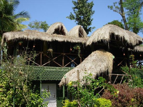Bamboo Loft