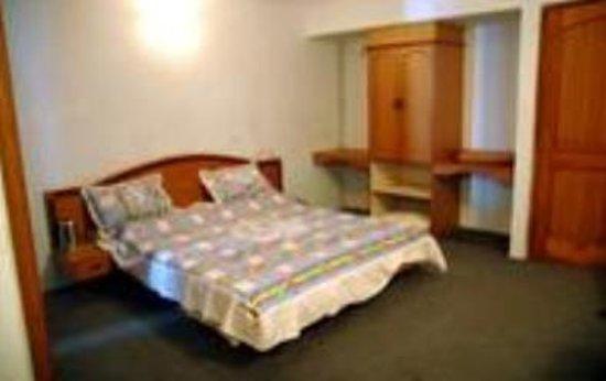Amravati, India: Hotel Mehfil Inn