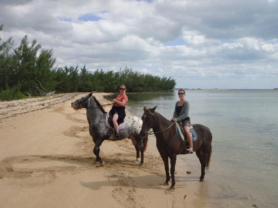 Happy Trails Stables, Windsor Equestrian Centre : Happy Trails beach ride, Nassau Bahamas