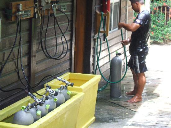 Bananarama Beach and Dive Resort: Dive Center