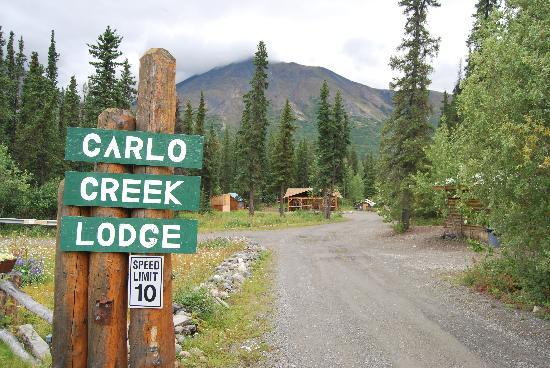 Carlo Creek Lodge: Strada d' accesso al lodge