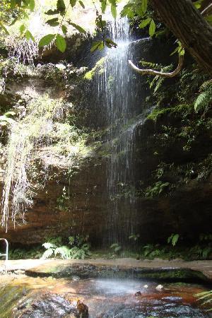 Wildframe Ecotours: Canyon Walk