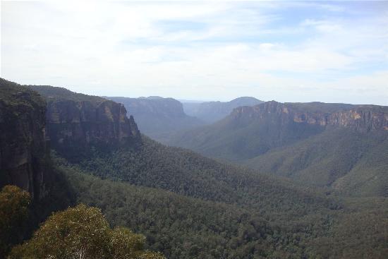 Wildframe Ecotours: Blue Mountains