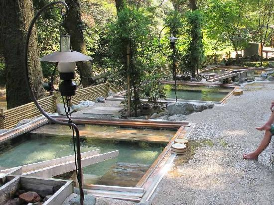 Hanatsubaki: 自然の中の 湯畑