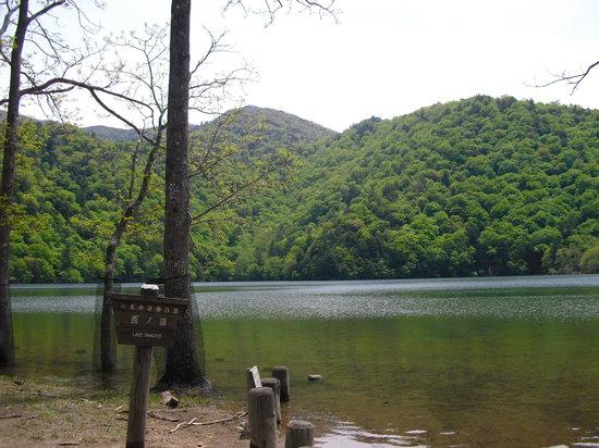 Sainoko Lake : 静寂の中の湖