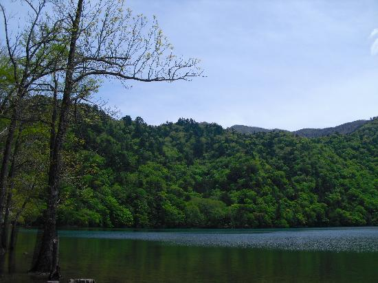 Sainoko Lake : 静かな湖面