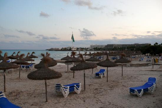 Protur Vista Badia Aparthotel: Sa Coma beach at dusk