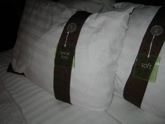 Holiday Inn Hotel & Suites Regina: pillows