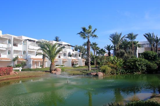 Hotel Riu Tikida Dunas: Garden