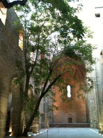 Chiesa di Santa Maria dello Spasimo: terra