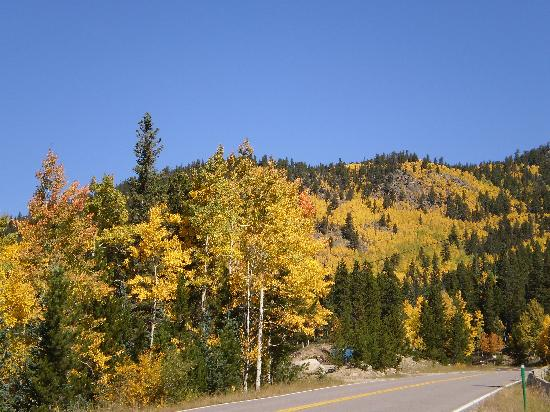 TownePlace Suites Boulder Broomfield: Gold Rush on Mt. Evans!