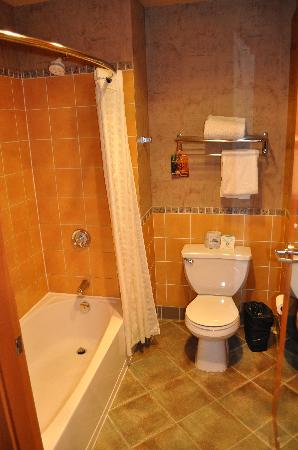 Quinault Beach Resort and Casino: standard bathroom