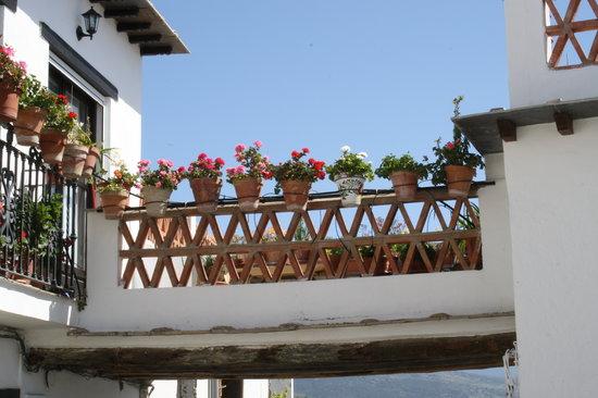 Los Arcos: A Tinao in Yegen
