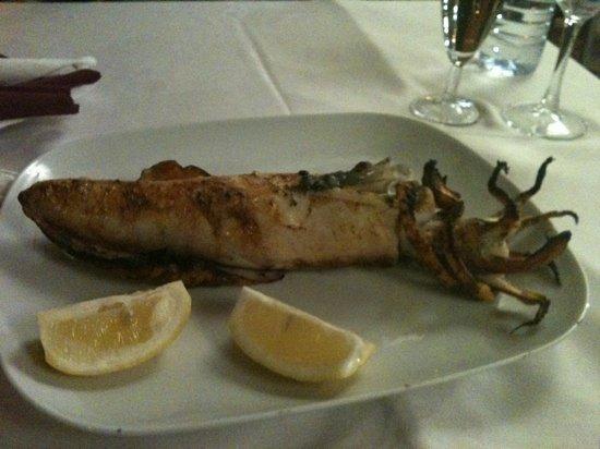 Tony Bar Sesimbra: The squid !!