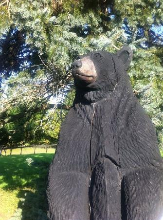 WhistleWood Farm Bed and Breakfast: Morning coffe with a friendly bear
