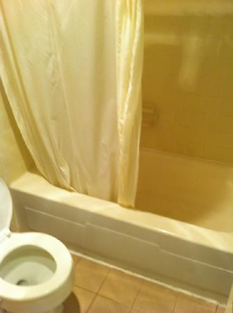 Americas Best Value Inn Richmond South: Yuck the bathroom needs serious cleaning and upgrade