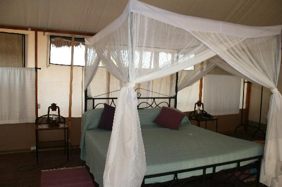 Maramboi Tented Camp: inside the tent