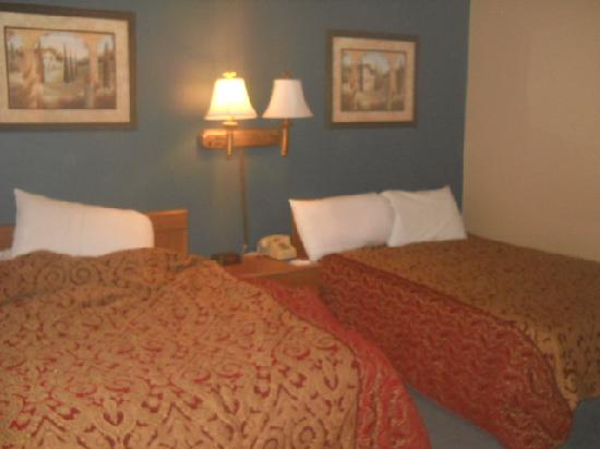 Americas Best Value Inn: stinky beds