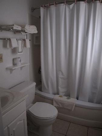 Hills Inn : Bathroom