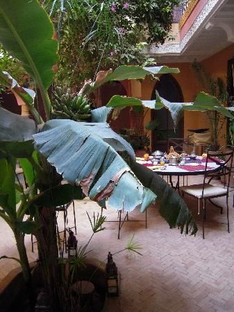 Riad Jaglia: Le petit déjeuner dans le patio