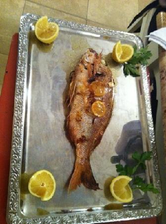 Restaurant Abri Des Flots : Pêche du jour