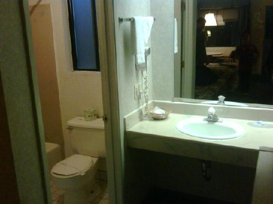 Americas Best Value Inn: America's Best Value Inn -San Carlos - Vanity Area