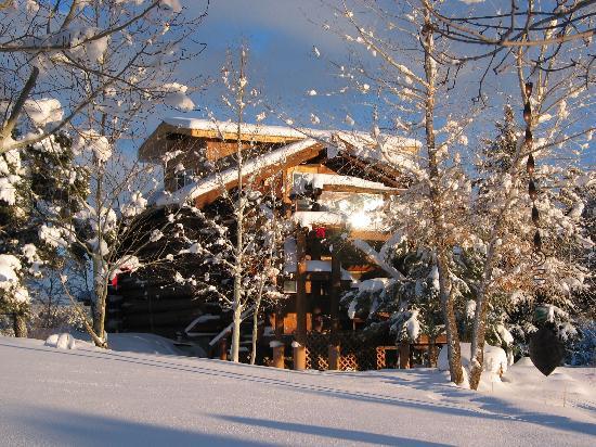 Sundance Bear Lodge: Winter - read a book and enjoy the marvel of fresh snow