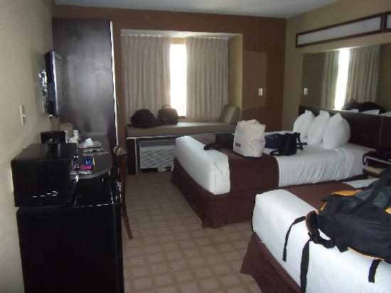 Microtel Inn & Suites by Wyndham Breaux Bridge: Room