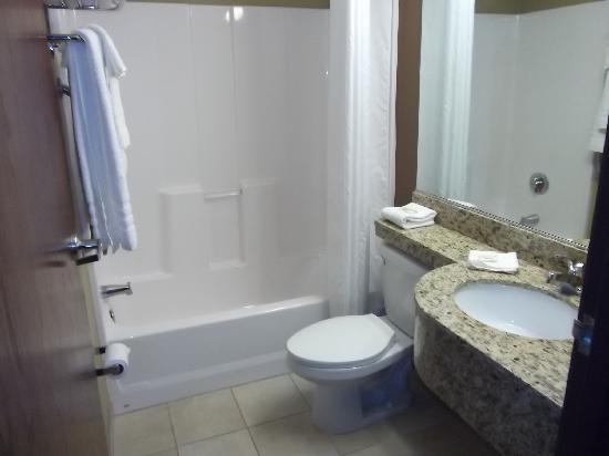 Microtel Inn & Suites by Wyndham Breaux Bridge: Bathroom