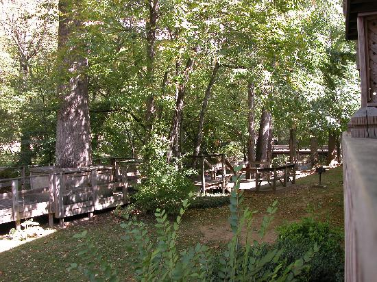 Maggie Valley Creekside Lodge: View of back near creek
