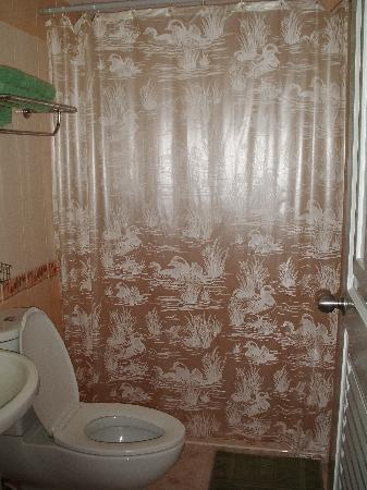 Cha-am Perfect House: The private bathroom. Nice shower curtain!