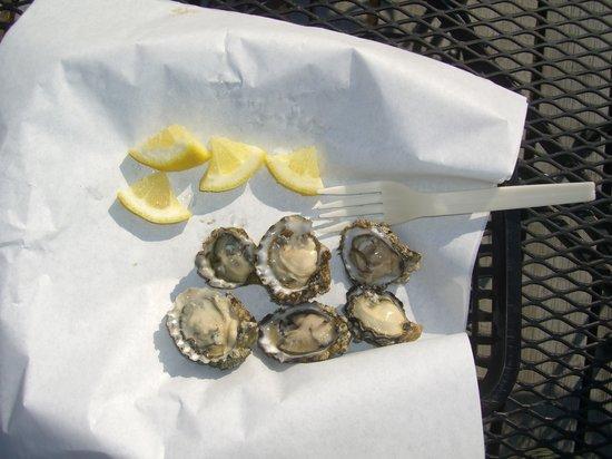 Oysterville, WA: Kumamoto Oysters
