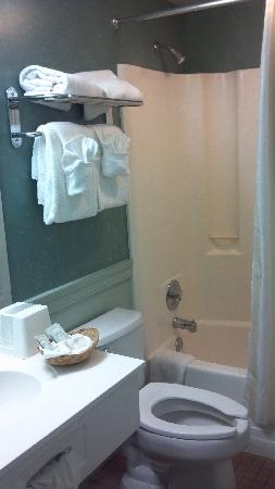 Inns Of Virginia Arlington: Bathroom